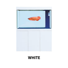 Load image into Gallery viewer, [Boyu] EYM Premium Aquarium - 280L(100cm) / 330L (120cm)