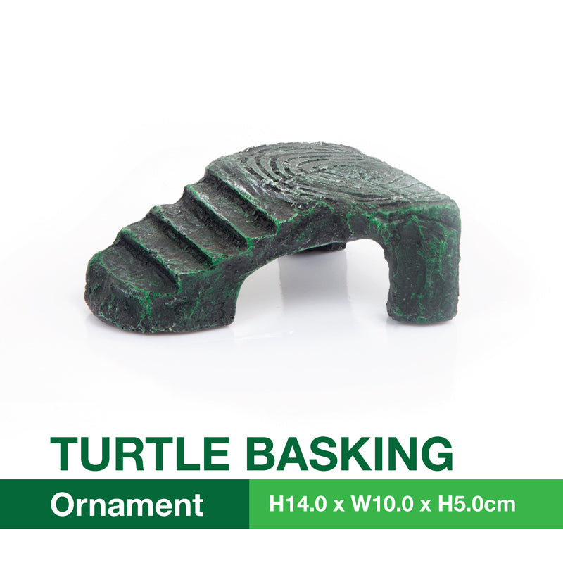 [Acquanova] Small Turtle Terrapins and Tortoise Aquarium Climbing and Basking Platform