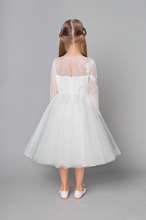 Load image into Gallery viewer, Rhinestones and Pearls Embroidered  Tulle Dress