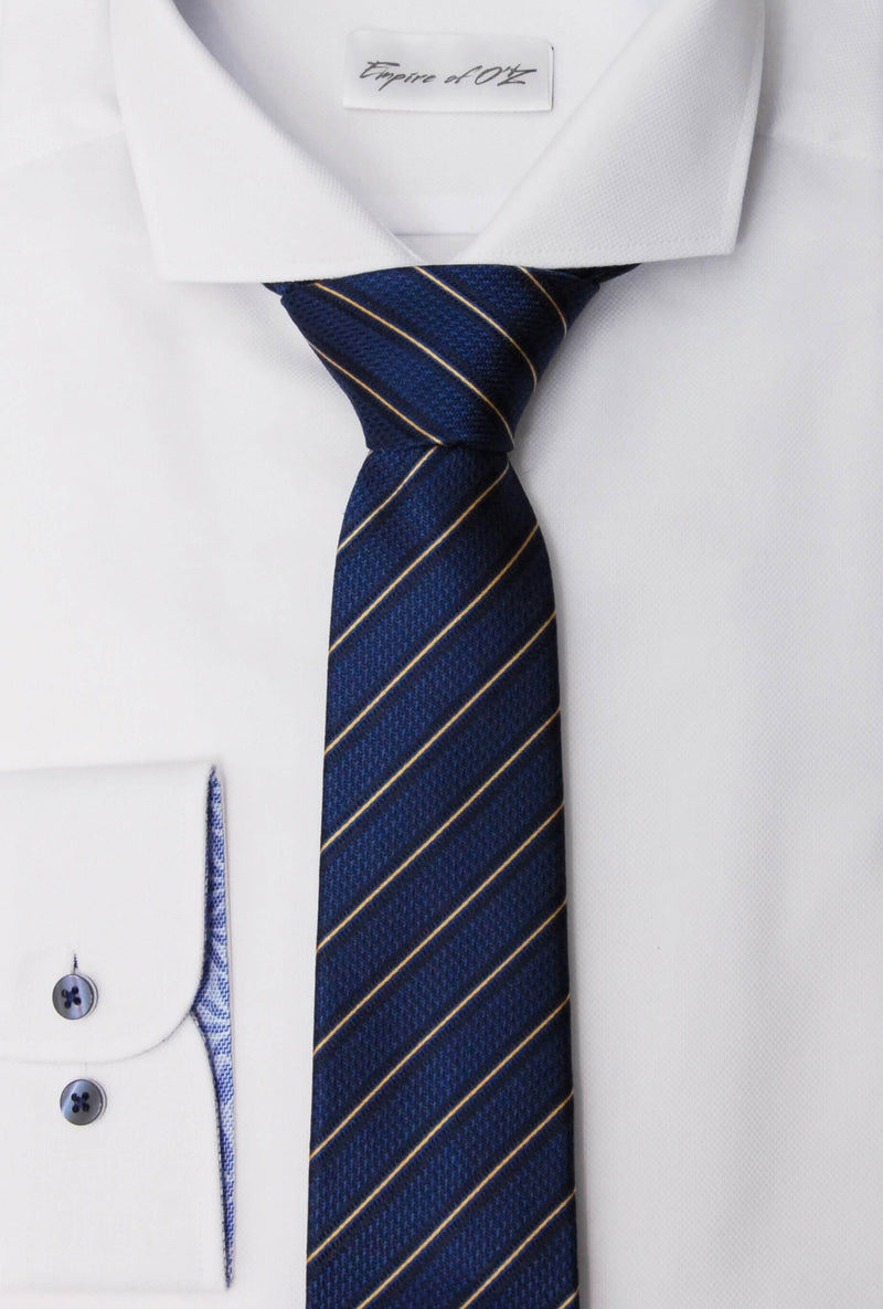 Silk tie with striped print - Empire of O'Z