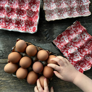 egg carton -red designs