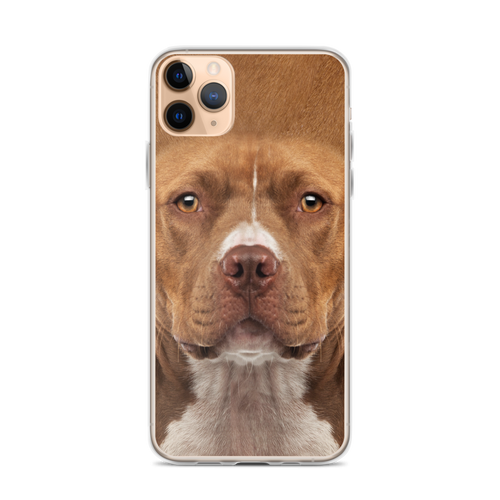 iPhone 11 Pro Max Staffordshire Bull Terrier Dog iPhone Case by Design Express