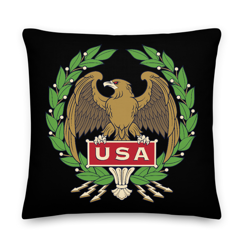 22×22 USA Eagle Square Premium Pillow by Design Express