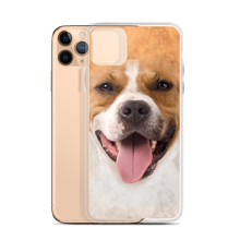 Pit Bull Dog iPhone Case by Design Express