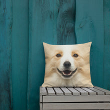 "Border Collie ""All Over Animal"" Square Premium Pillow by Design Express"