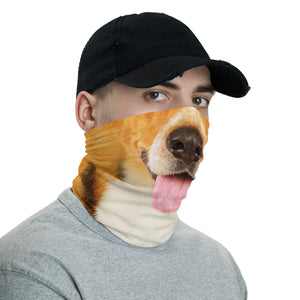 Beagle Dog Neck Gaiter Masks by Design Express