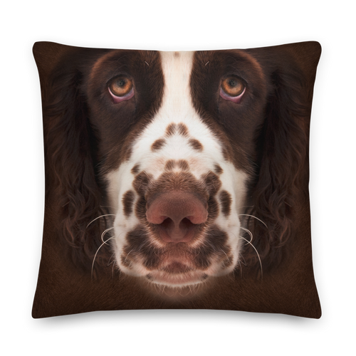 22×22 English Springer Spaniel Dog Premium Pillow by Design Express