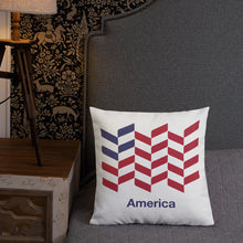 "America ""Barley"" Square Premium Pillow by Design Express"
