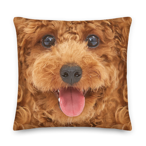 22×22 Poodle Dog Premium Pillow by Design Express