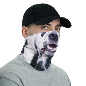 Dalmatian Dog Neck Gaiter Masks by Design Express