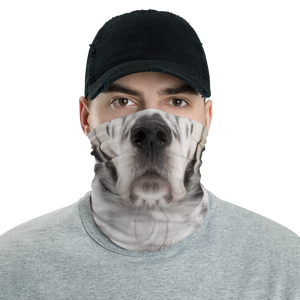 Default Title English Setter Dog Neck Gaiter Masks by Design Express