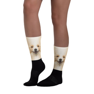 "Border Collie ""All Over Animal"" Socks by Design Express"