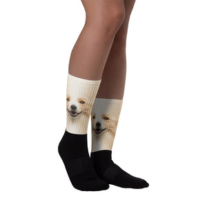 "M Border Collie ""All Over Animal"" Socks by Design Express"