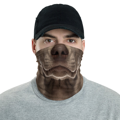 Default Title Weimaraner Dog Neck Gaiter Masks by Design Express