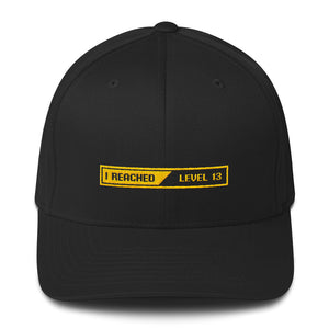 Black / S/M I Reached Level 13 Loading Structured Twill Cap by Design Express