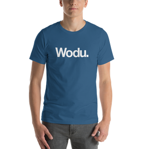 "Steel Blue / S Wodu Media ""Everything"" Unisex T-Shirt by Design Express"