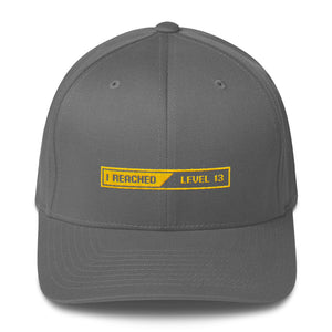 Grey / S/M I Reached Level 13 Loading Structured Twill Cap by Design Express