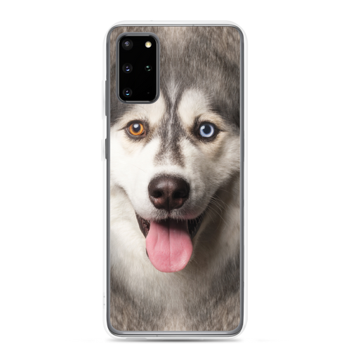 Samsung Galaxy S20 Plus Husky Dog Samsung Case by Design Express