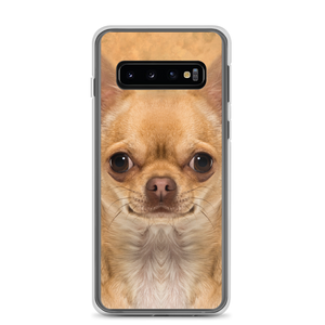 Samsung Galaxy S10 Chihuahua Dog Samsung Case by Design Express