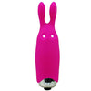 Bunny Pocket Vibe - Godfather Adult Sex and Pleasure Toys
