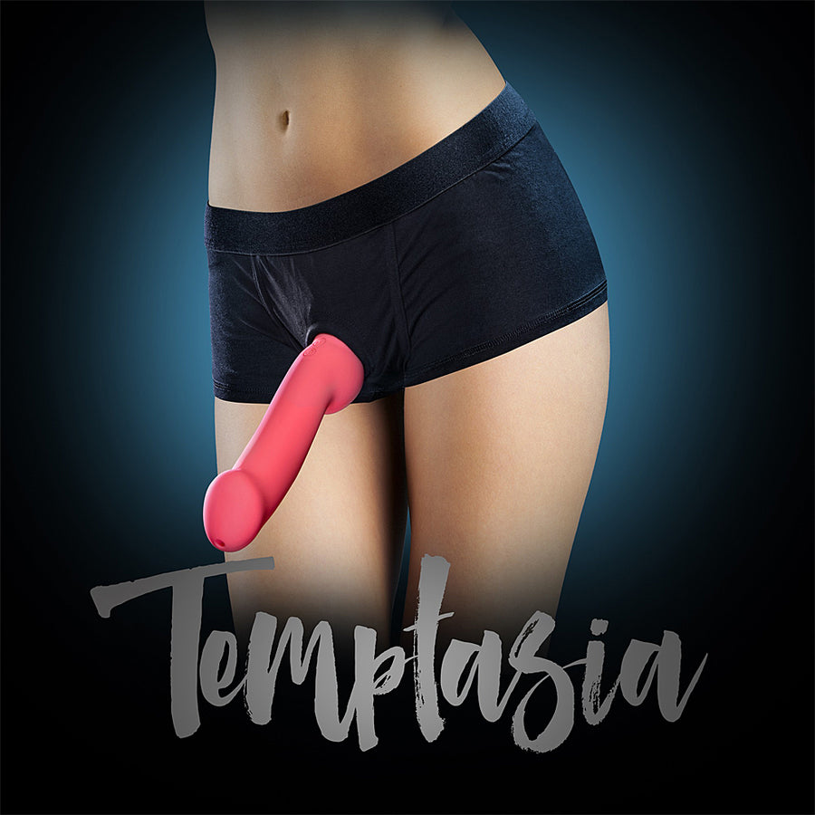 Temptasia Harness Briefs - Medium Black