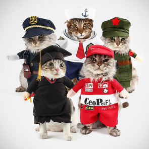 Funny Cats All Seasons Costumes