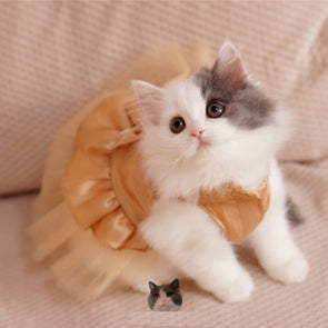 Bling Bling Cat Wedding Dress