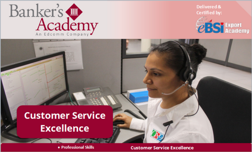 Customer Service Excellence - eBSI Export Academy