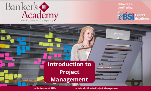 Introduction to Project Management - eBSI Export Academy