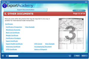Export Documentation - eBSI Export Academy