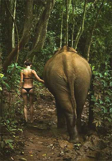 Woman and elephant - Jadenbree Travels