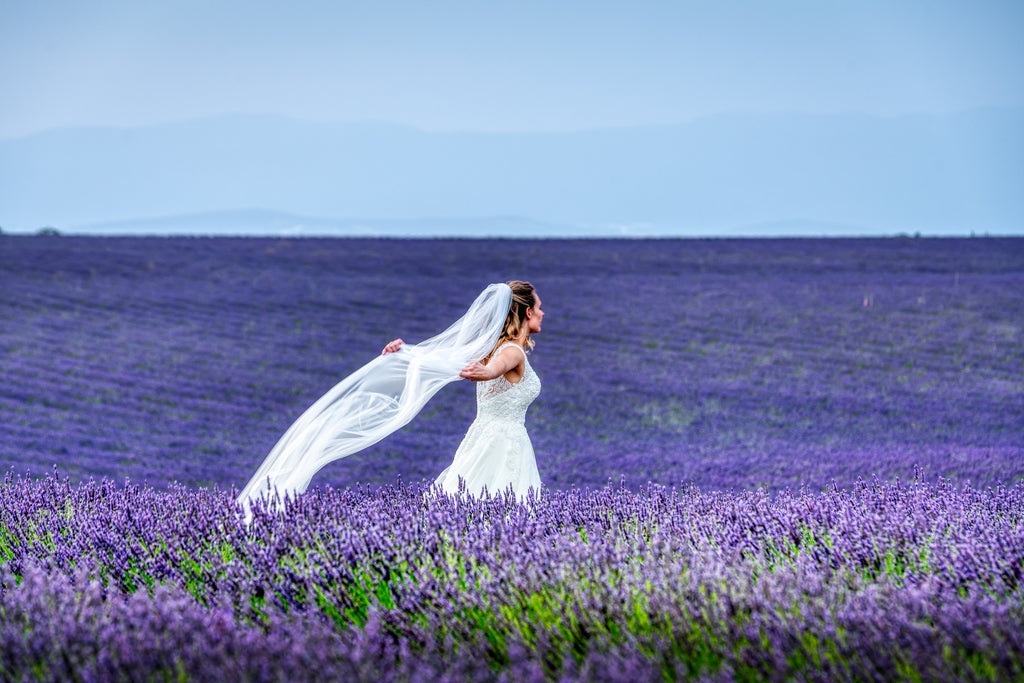Michael Stahlschmidt • DANCING BRIDE IN LAVENDER FIELD • 2019
