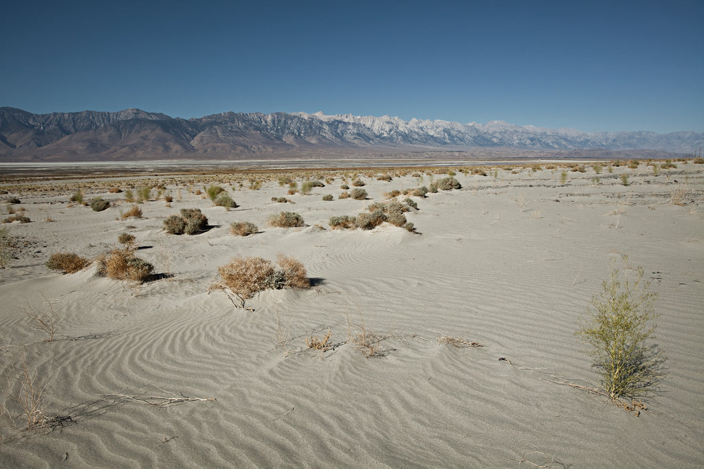 Hergen Schimpf • DEATH VALLEY III
