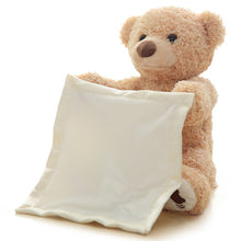 Load image into Gallery viewer, Electric Plush Peek A Boo Teddy Bear