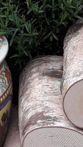 Full Round Logs - Kiln Dried Birch - 10cm Long