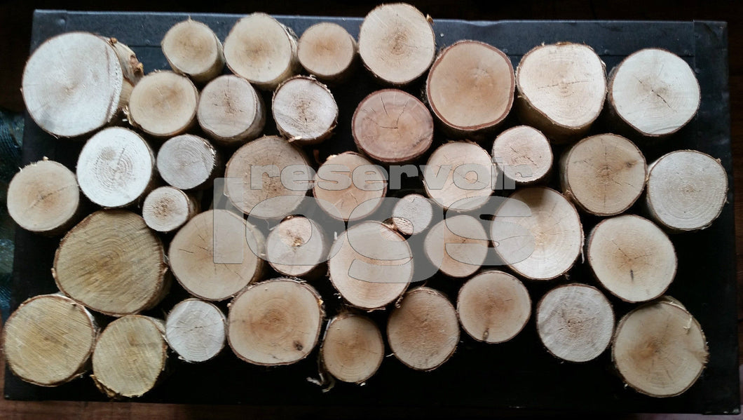 Log Slices