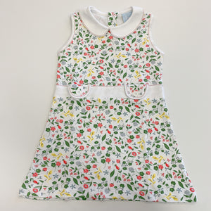 Channing Pima Dress Spring Berries