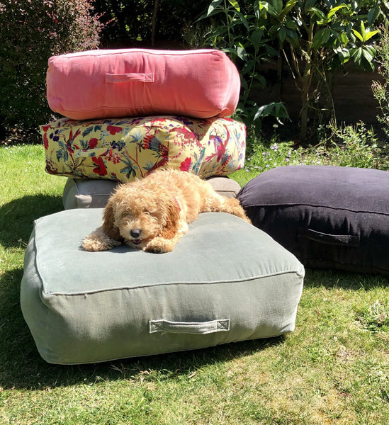 Garden Transformation for Under £100…Voila! (Dog Not Included)