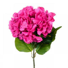 Artificial Extra Large Dark Pink Hydrangea white bg