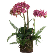 ARTIFICIAL Pink Orchid And Fern Garden In Rootball DISPLAY