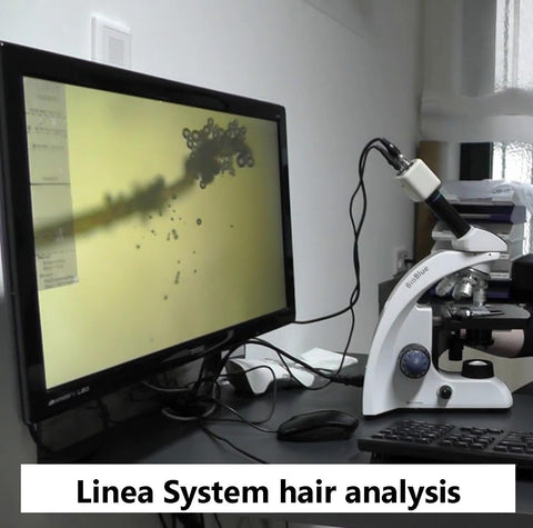 Linea System Therapy Individual Hair Analysis - Hair Growth