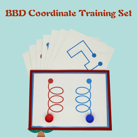 BBD (Bilateral Brain Development) Coordinate Training Set
