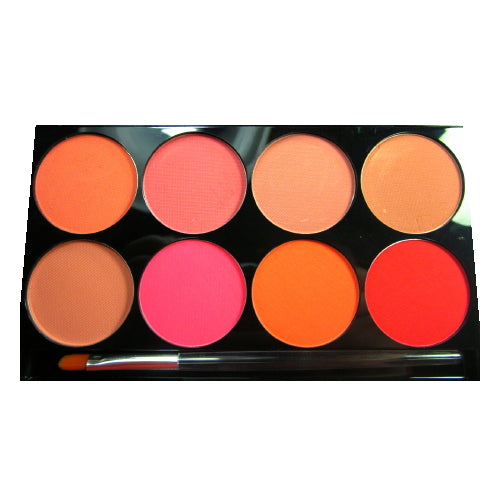 mehron Cheek Powder 8 Color Palette | HODIVA SHOP