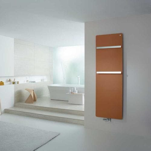 Zehnder Vitalo Bar Bathroom