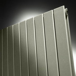 Zehnder Roda Vertical Double Panel