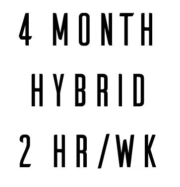 4 Month Hybrid In Person + Online Coaching