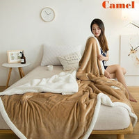 Winter Super Soft Double-layer Lamb Plush Flannel Blanket Padded Bed Blanket