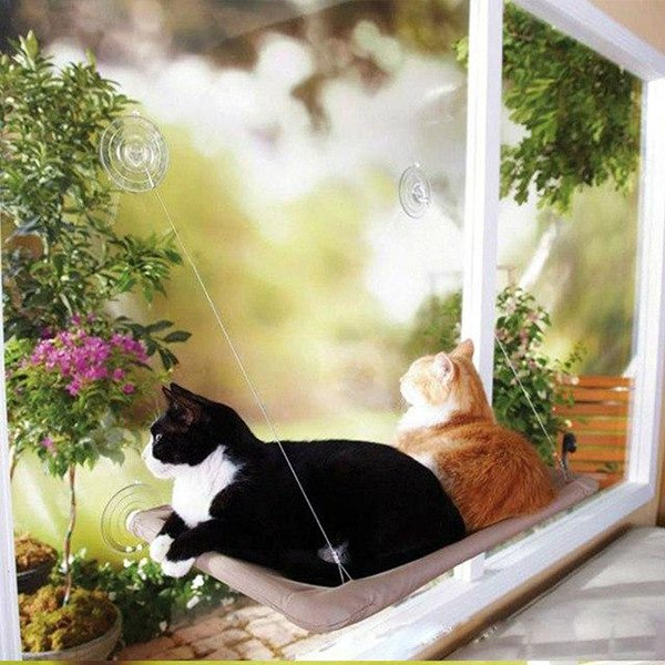 Pet Hanging Beds Bearing 20kg Cat Sunny Seat Window Mount Pet Cat Hammock