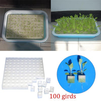 Square Seedling Sponge Soilless Cultured Vegetable Equipment Balcony Planting Pot Vegetable Machine Water Culture