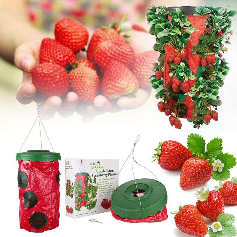 Topsy Tnrvy Six Hole Strawberry Vegetable Planter Tomato Pepper Fruit Plant Bag